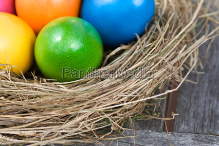 close up of colorful easter eggs