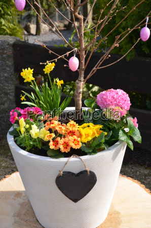 spring flowers heart