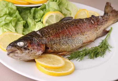 comida pescado pesca trucha parrilla barbacoa