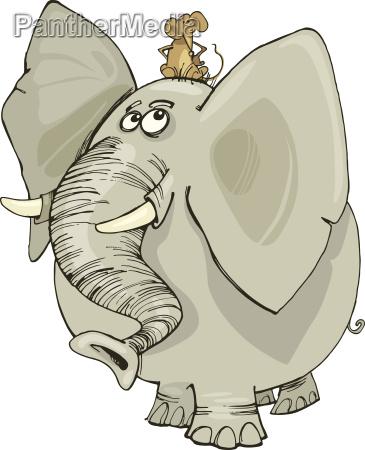 elefante con el raton