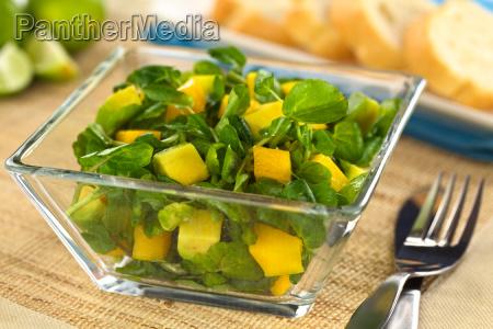 watercress mango avocado salad