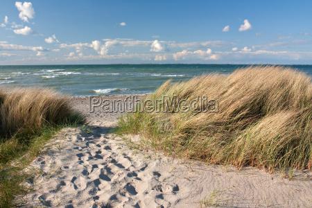 camino a la playa de dunas
