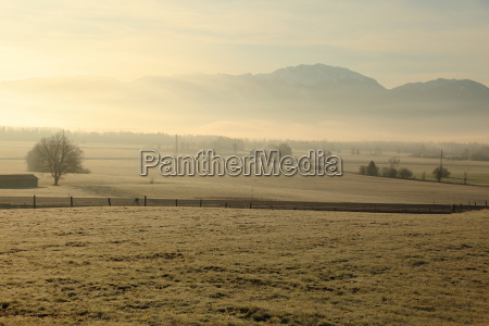 nebellandschaft morning