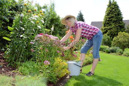 el cultivar un huerto en julio