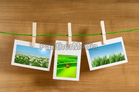 fotos de la naturaleza en marcos