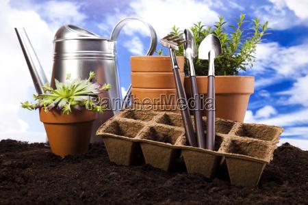 herramienta jardin flor planta primavera instrumentos