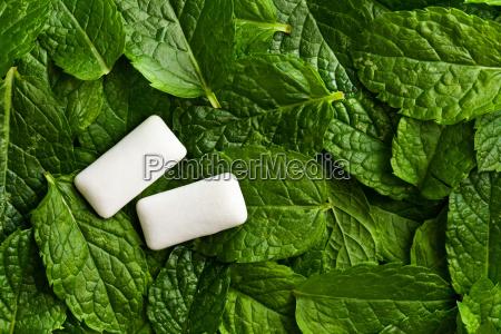 hojas de menta y goma de