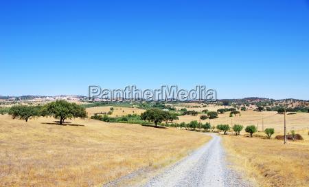 paisaje rural de la aldea alentejano