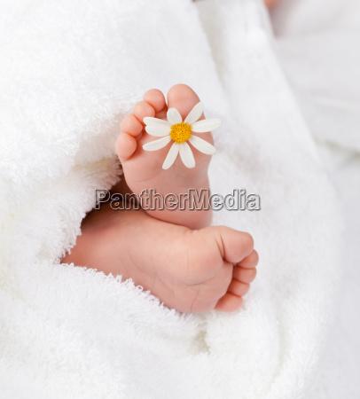 encantadora pie infantil con poco margarita