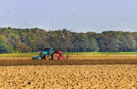 agriculture plough up the field