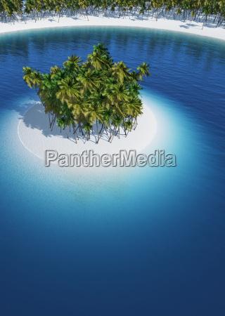 lonely palm tree island