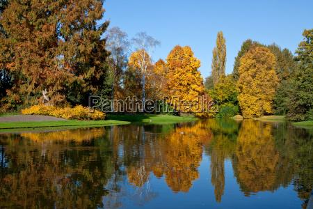 colores, del, otoño - 8046216