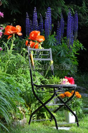 silla de jardin flores de remolacha