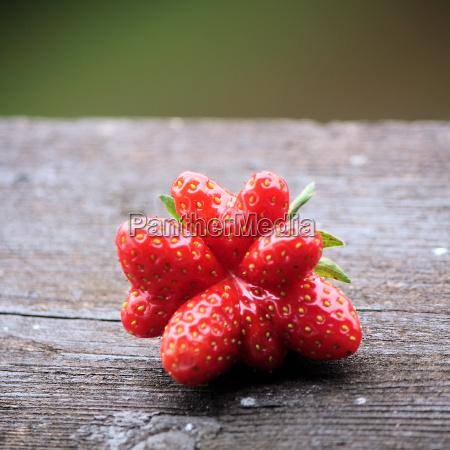 fruta fresa bayas tabla de madera
