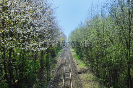 tren vehiculo transporte federal ferroviaria