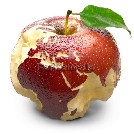 comida hoja salud bio medio ambiente