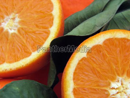 bebidas beber refresco fruta jugo de