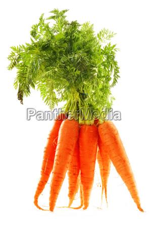 zanahorias frescas monton aislado en fondo