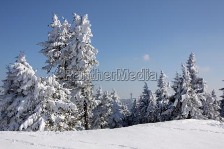 erzgebirge esqui deportes de invierno nieve