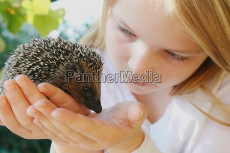 mano salvaje los animales proteger protector
