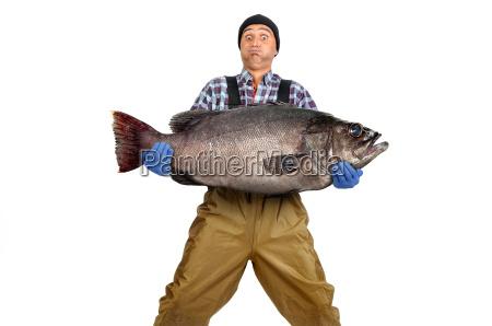 pesca del pescador