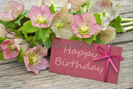 escribir mesa flor planta madera marron