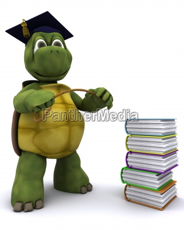 tortoise teacher with a stack of