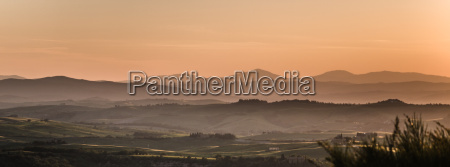 orange colored fields in tuscan landscape