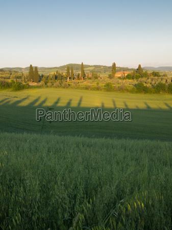 sun sets over tuscan farmland with