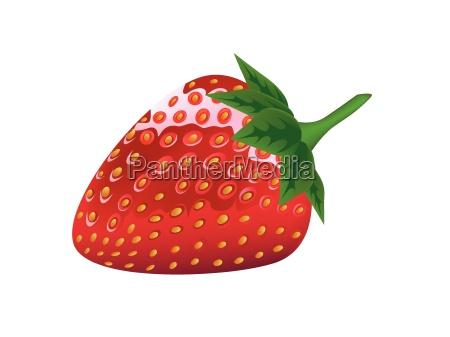 salud fresa baya fresco