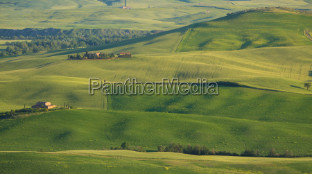 green fields in tuscany as the