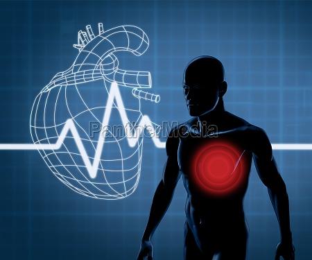 mapeo grafico corazon y cuerpo