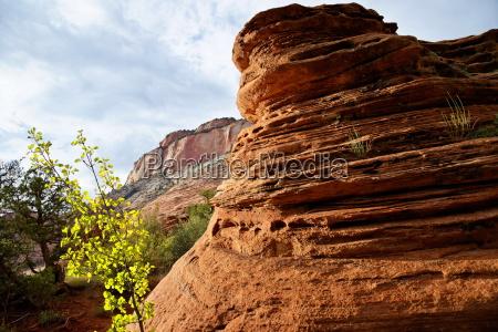 vista al canyon en el parque