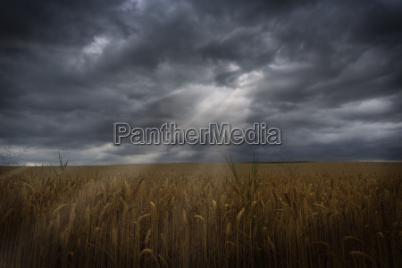 sunrays with dramatic sky over a