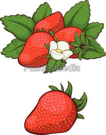 fresa fresca