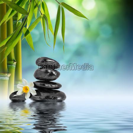 piedras y bambu en el agua