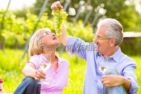 glade seniorer sidde i vingarden