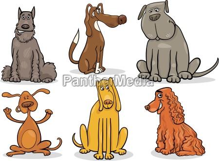 mascotas los animales animal de peluche