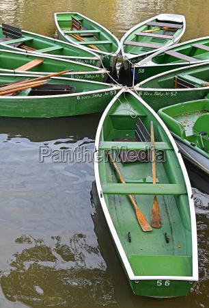 remo barcos en el neckar cerca