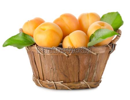 albaricoques, en, una, cesta, aislada - 10122745