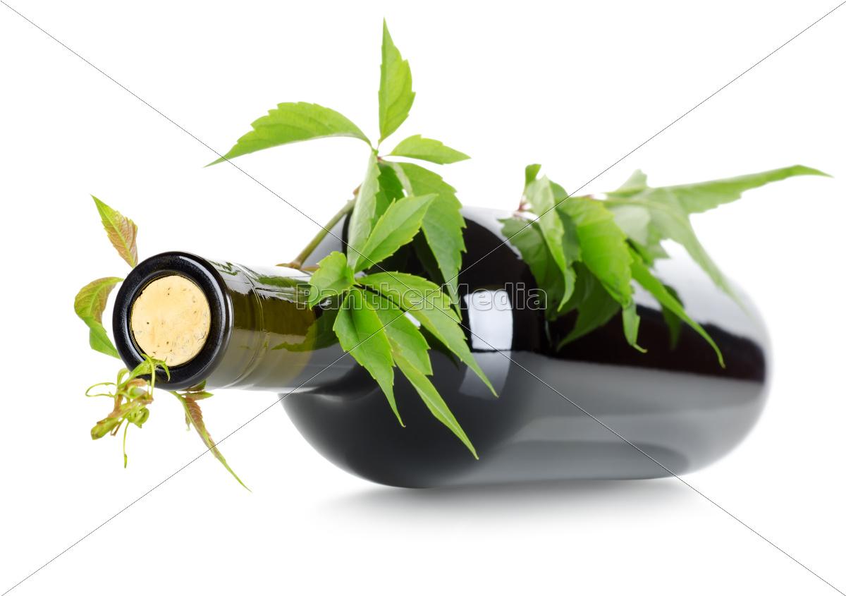 wine, and, vine - 10123073