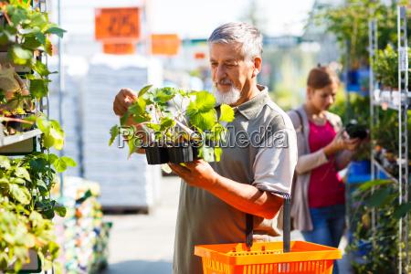 hombre, mayor, compra, de, plantas, de - 10148075