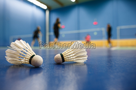 badminton pistas de badminton con