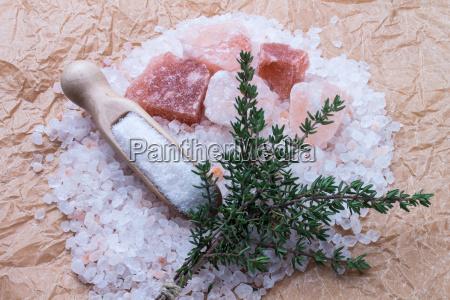 sal especia especias cocina los cocineros