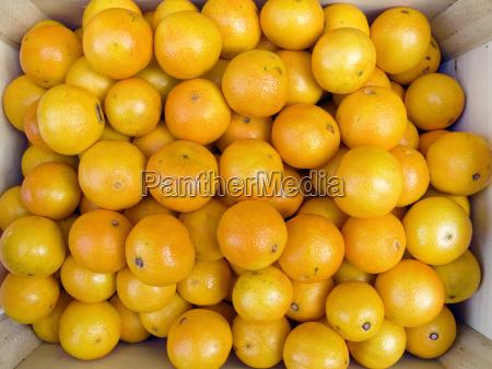 mandarinas en caja