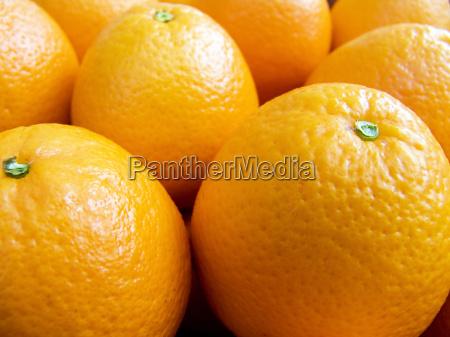 naranja comida vender agricola primer plano