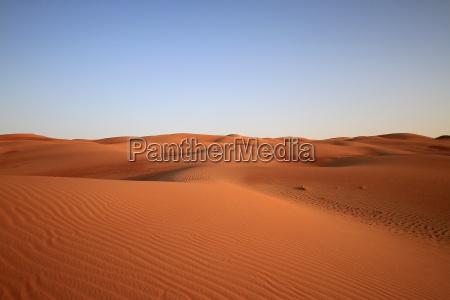 solo en el desierto