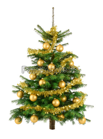 ingenious christmas tree with gold balls