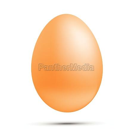 huevo vectorial