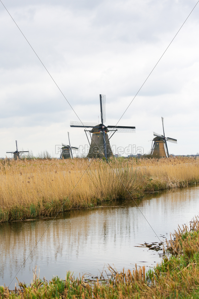 dutch, windmills - 11230356